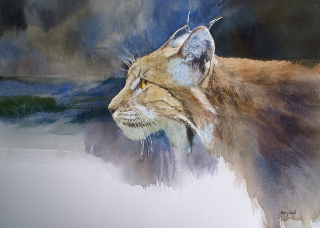 Lynx. Fabriano 635g  - Ft.76x56cm