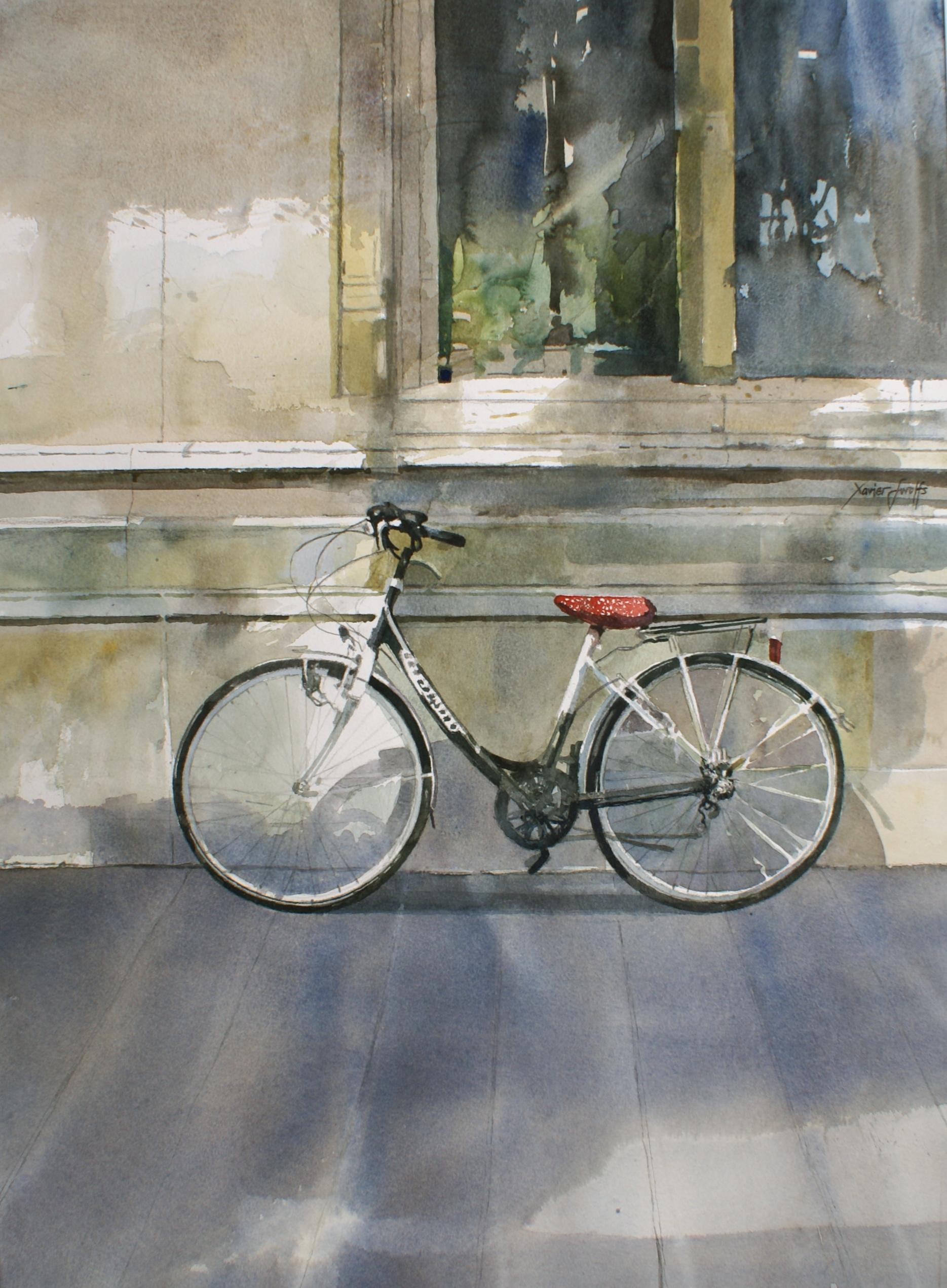 De eenzame fiets : Xavier Swolfs
