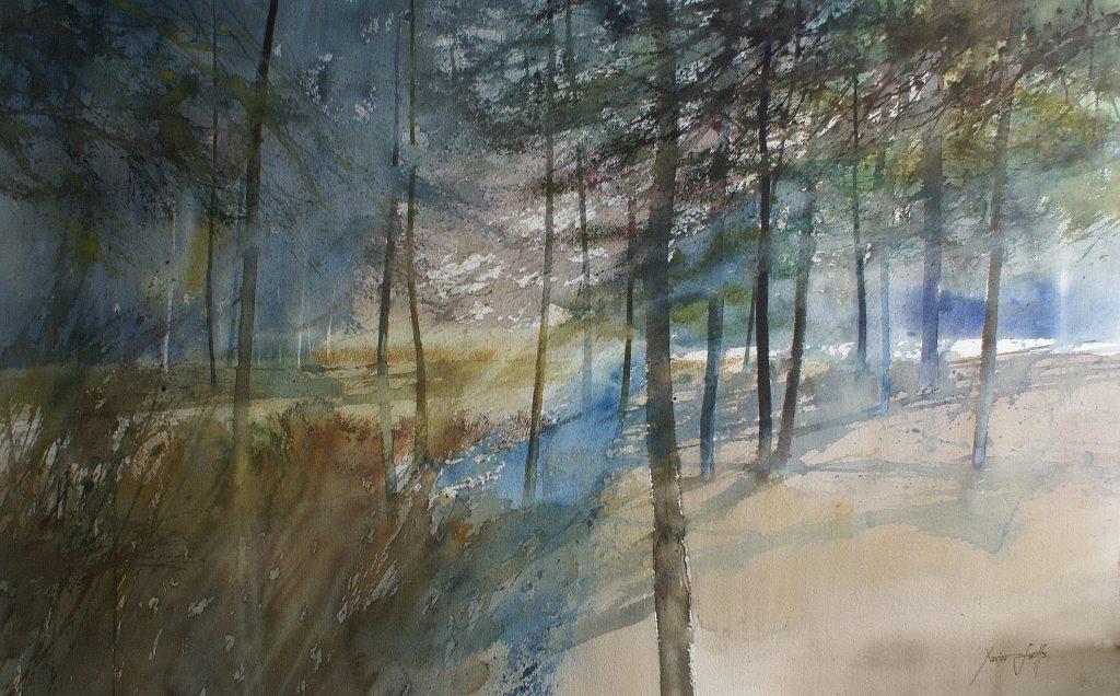 Open plek in het sparrenbos ... Clairière... Arches 435g - Ft. 120x85cm